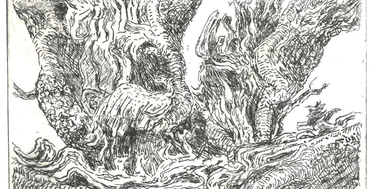 Audun Storaas – Tre i Hardanger